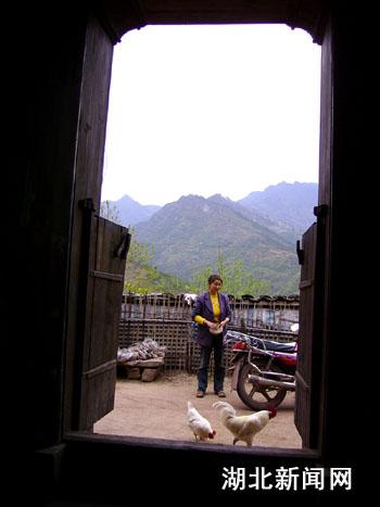 农家小院-新农村 组图 乡村即景 3